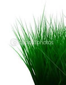 Grass www.depostiphotos.com I