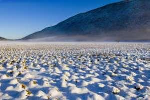 Snow Jean-Pierre Piechot www.images.yahoo.com II