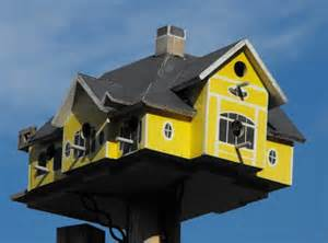Birdhouse Difficult