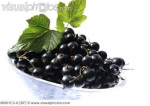 Black Currants www.visualphotos.com I