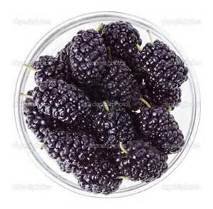 Black Mulberry www.depositphotos.com I