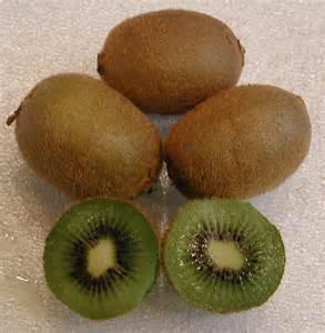 Kiwi www.all-creatures.org.jpg I
