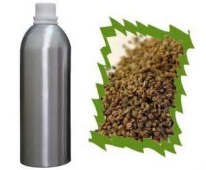 1 celery essential oil.jpg I