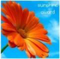1 Sunshine Award I