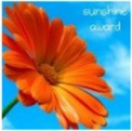 1 Sunshine Award I