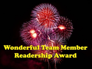 1 wonderful-readership-award 2