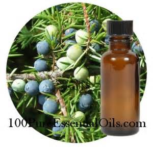 1 Juniper Essential Oil