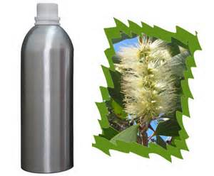1 Essential Oil of Niaouli