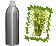 1 Essential Oil of Vetiver