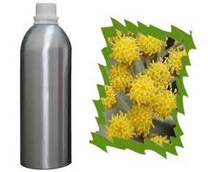 1 Helichrysum Essential Oil