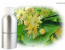 1 A Linden Blossom Essential Oil