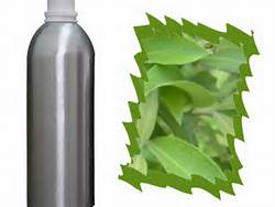 1 A Myrtle Essential Oil