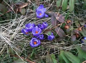 1 A April Showers  www.fibresoul.blogspot.com 1