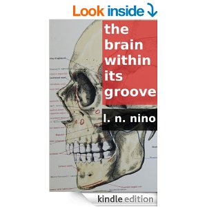 The Brain Within its Groove