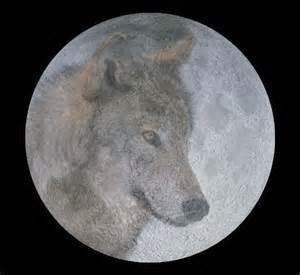 full wolf moon january 2015