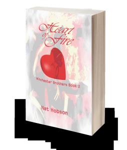 Heart of Fire Book