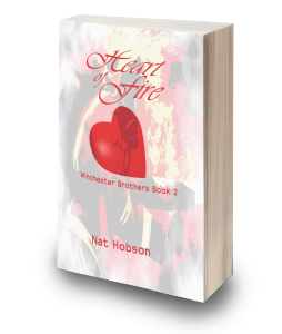 Heart of Fire Book