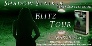 Shadow Stalker Banner 2 for Destiny Reconciled Part Two