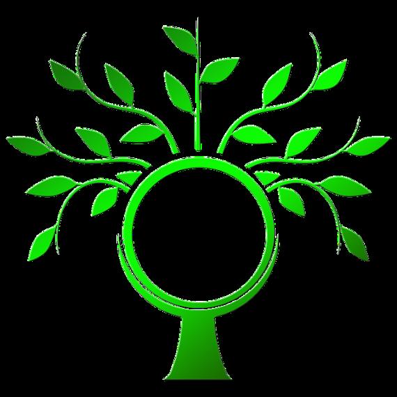 tree-990857_640