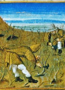 feb-labors-spreading-manure