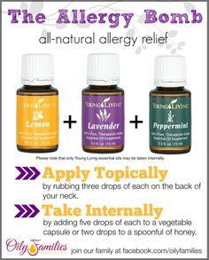 allergy-bomb-1