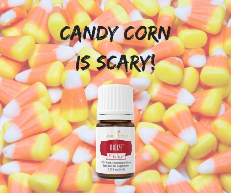 Digize Candy Corn class