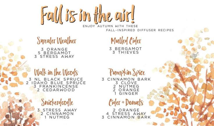 Fall is in the air Diffuser Recipes